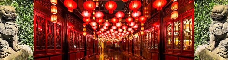 nouvel an chinois 2018, chien de terre yang, soins énergétiques Paris, blocages énergétiques, abondance, alignement, reiki, chakra, clair ressenti, bioénergie, Christophe MEXIS