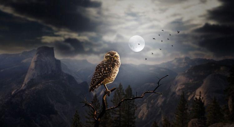 Nouvelle lune du 7 décembre 2018, gilets jaunes, astrologie, soins énergétiques, soins énergétiques Paris, blocages énergétiques, abondance, alignement, Christophe MEXIS, reiki, chakra, clair ressenti, bioénergie