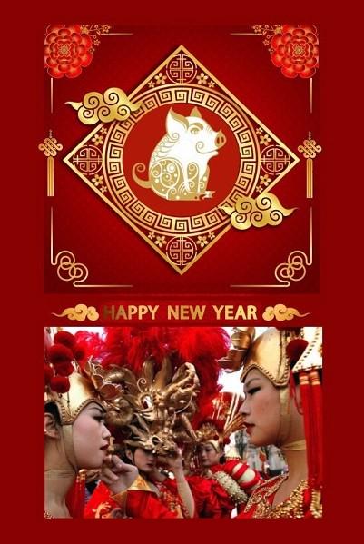 Nouvel an chinois 2019, année du cochon de terre, soins énergétiques, soins énergétiques Paris, blocages énergétiques, abondance, alignement, reiki, chakra, clair ressenti, bioénergie, Christophe MEXIS