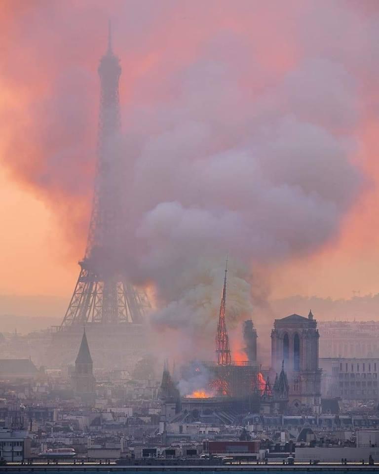 unnamed-file NOTRE-DAME de PARIS : Décryptage 2/4