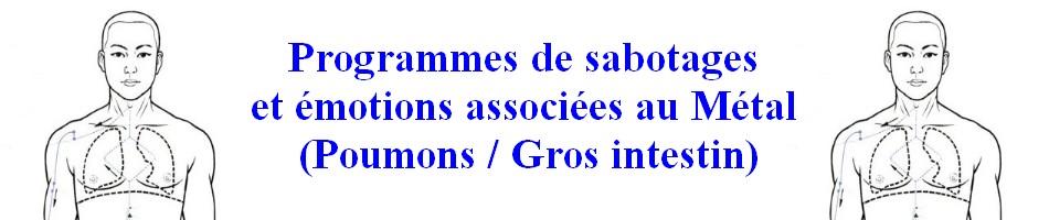 POUMONS-BANDO Programmes de sabotages des Poumons.