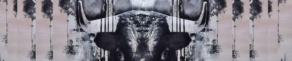 Nouvelle Lune en Taureau du 23 avril 2020, soins énergétiques, soins énergétiques Paris, blocages énergétiques, abondance, alignement, reiki, chakra, clair ressenti, bioénergie, chamanisme, Christophe MEXIS