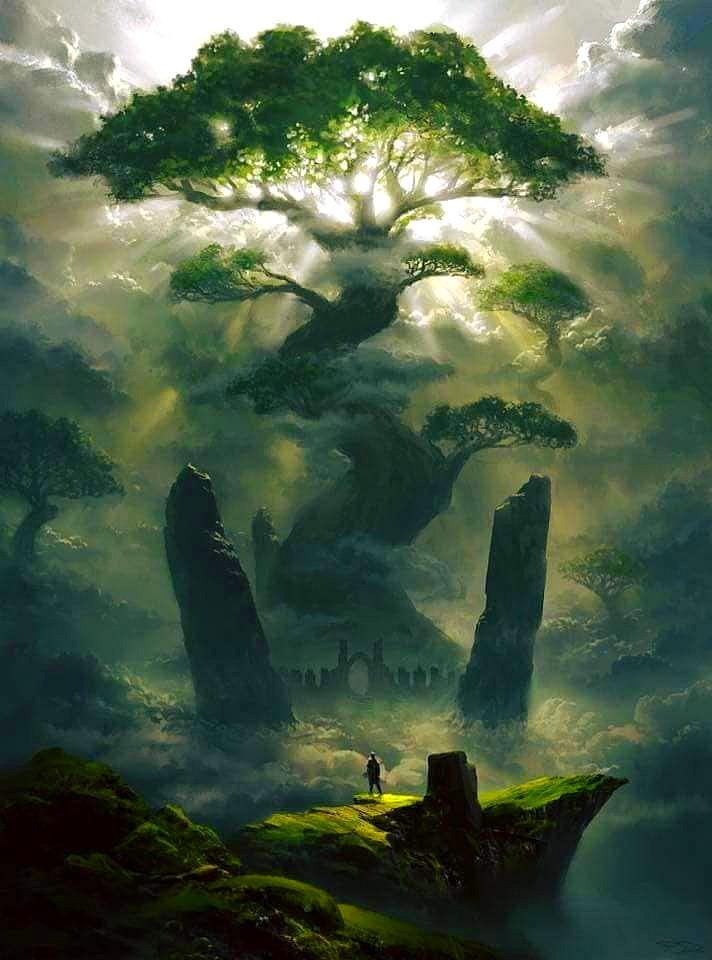 118597652_2702489316745093_8329178675378976754_n L'énergie des arbres.