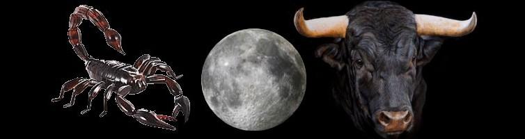 Pleine lune du 31 octobre, axe taureau scorpion, astrologie, soins énergétiques, soins énergétiques Paris, blocages énergétiques, abondance, alignement, Christophe MEXIS, reiki, chakra, clair ressenti, bioénergie