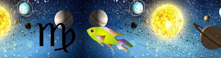 Pleine Lune du 27 février 2021, astrologie, soins énergétiques, soins énergétiques Paris, blocages énergétiques, abondance, alignement, Christophe MEXIS, reiki, chakra, clair ressenti, bioénergie